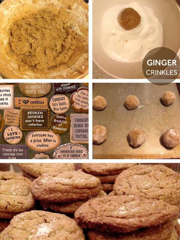 GINGER COOKIES copy