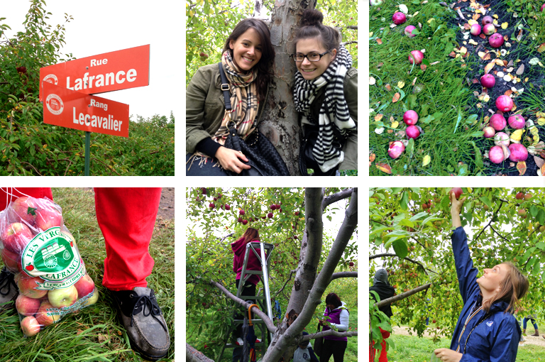 Telio-Apple-Picking-Family-Friends