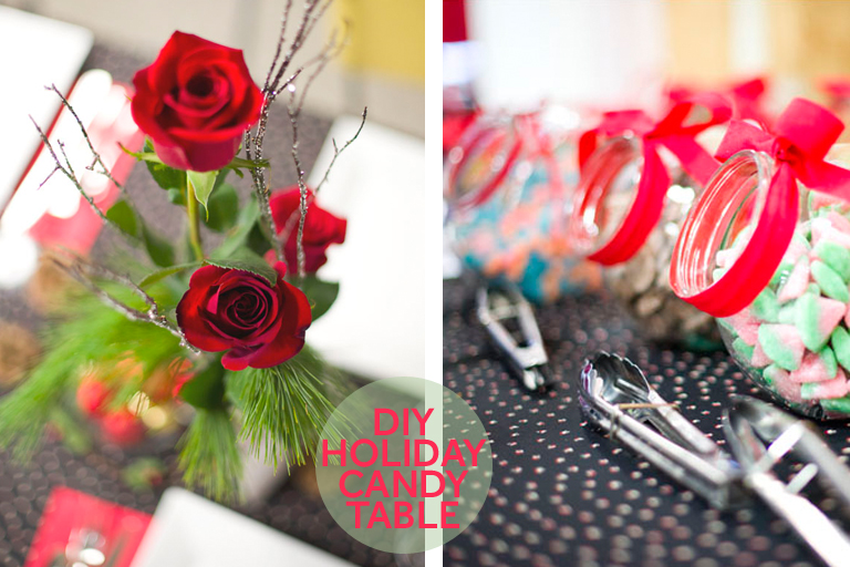 TÉLIO-diy-holiday-christmas-party