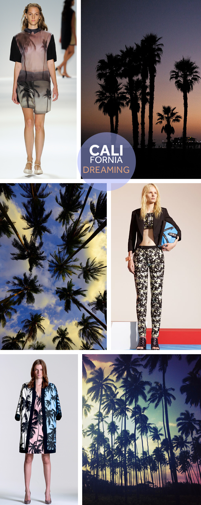 california-dreaming-palm-tree-osklen-kenzo-fausto-puglisi-runway-sunset-spring-summer-14