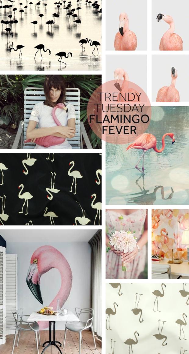 Trendy-tuesday-Flamingo-fever copy
