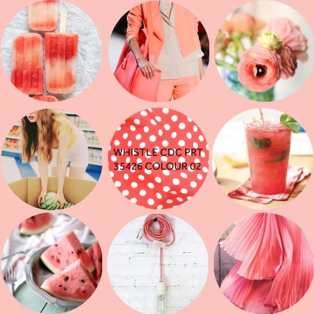 color-crush-watermelon-splash copy