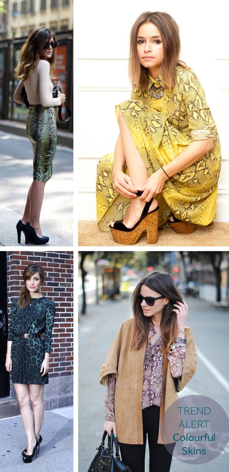 color-animal-skins-fashion-trend