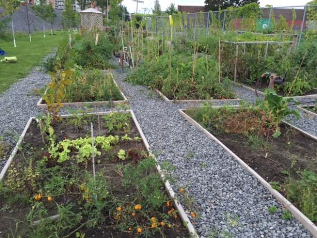 Télio Garden
