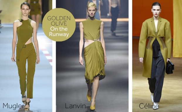 Golden Olive Fashion